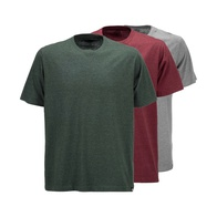Dickies Hastings T-Shirt Pack (assorted colour)
